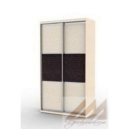 Шкаф купе двухдверный с вставками (1000-1700)